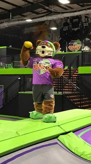 JumpGiants_Activities_Dodgems_JayGeeDodgeBall_Image